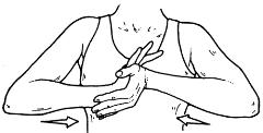 Isometric Hand Squeeze
