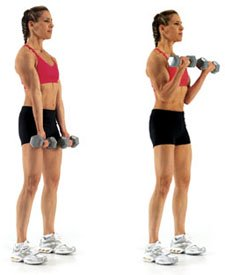 How To Do Bicep Curls