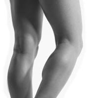 Nice Calf Muscles